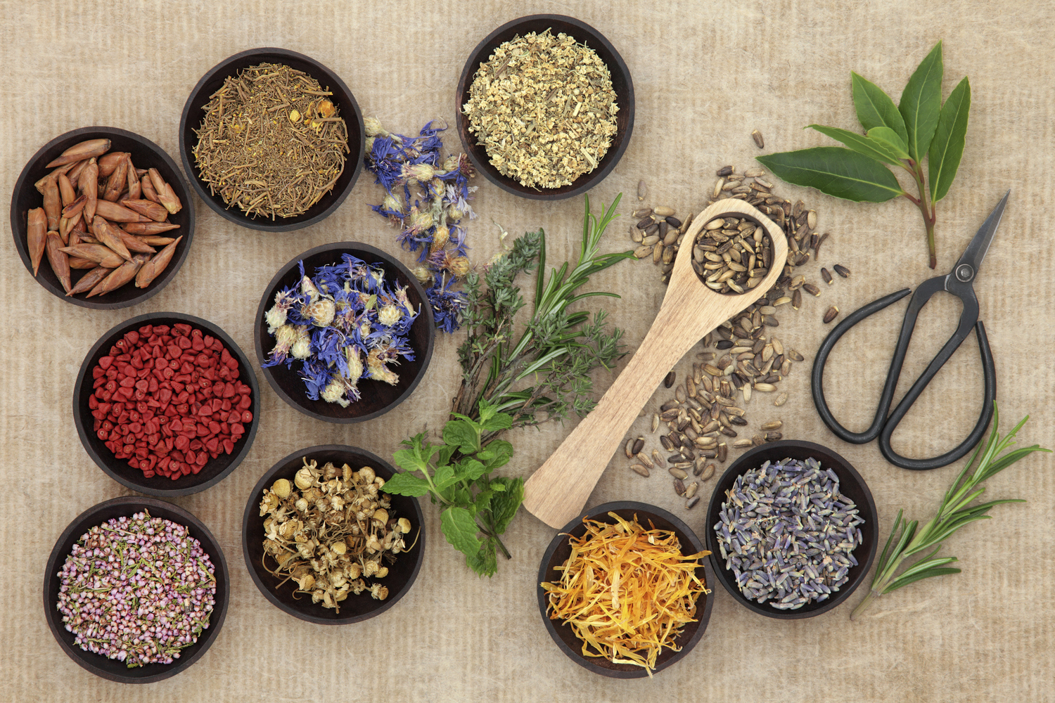 Naturopathy with Chloé Turner | Clarity North Adelaide